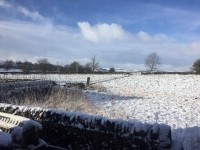 Chelmorton January sunshine in the snow - photo gallery
